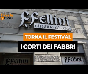 intervista Trieste NEWS